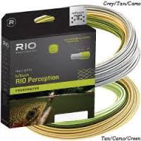 #3-RIO-IN-TOUCH-PERCEPTION