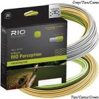 #3-RIO-IN-TOUCH-PERCEPTION